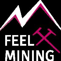 logo-feelmining-redandwhite@2x